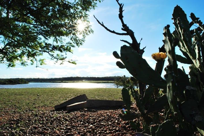 Reserva Forestal Chaviyú