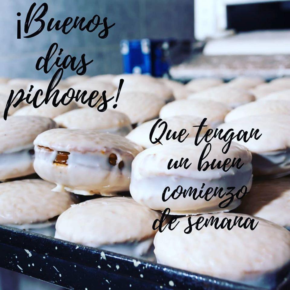 Mis Pichones